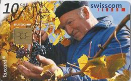 Telefoonkaart - Zwitserland. Swiss Telecom. Taxcard. CHF 10. W�mmet. Fl�sch GR. foto: Rita Palanikumar.