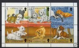 PUPPIES DOG DOGS GIBRALTAR 1996 MNH S/S - Hunde