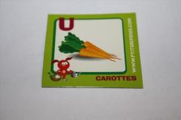 Magnet CAROTTES U - Letters & Digits