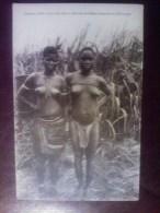 Femmes Telles Qu'on Les Voit Au Marché De Nsona-Kimalomba (Kwango) - Belgisch-Congo - Varia