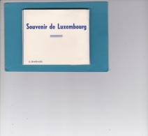 DÉPLIANT 10  PETITES VUES  DU  LUXEMBOURG - Postcards