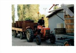 21 - SAINTE MARIE LA BLANCHE - Livraison Raisin à La Coopérative Vinicole - Tracteur - Autres Communes