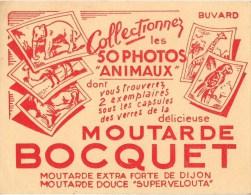BUVARD MOUTARDE BOCQUET COLLECTIONNEZ LES 50 PHOTOS ANIMAUX - Moutardes