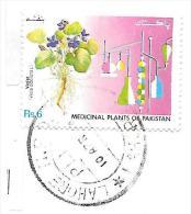 Pakistan: Medical Plants - Heilpflanzen