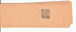 MONACO - 1893 - BANDE JOURNAL ENTIER STORCH B2 - NEUVE - Monaco