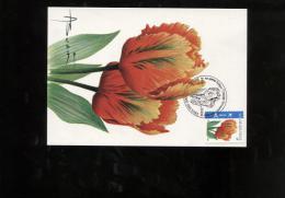 Belgie Buzin Birds Carte Maximum FLOWERS FLEURS 3786 Tulipa Bruxelles 19/5/2008 ONDER ONGETAND - 1985-.. Oiseaux (Buzin)
