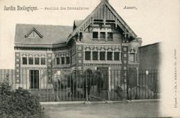 CPA- Antwerpen- Anvers - Antwerp - Jardin Zoologique Pavillon Des Dromadaires -N°31- Édit° HERMANS - Non Circulée- TTBE - Antwerpen
