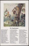 """Allemagne 1931. Carte Postale """"le Mariage Des Oiseaux"""". Hibou, Cygne, Tétras... - Oiseaux"""