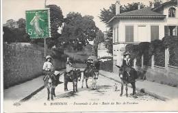 ANE - ROBINSON - Promenade à âne - Route Du Bois De Verrières - Anes