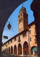 Conegliano Veneto - Il Duomo - 20-28 - Formato Grande Viaggiata - Treviso