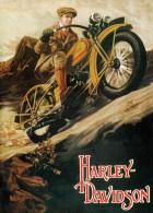 Cartel Affiche Poster Vintage Advertisings GRAN FORMAT (35X42 CM. APROX.) 2 - Afiches