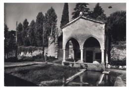 Schio (VI) S.Maria Della Salute - Vicenza