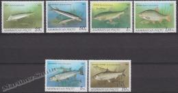 Azerbaidjan - Azerbaijan - Azerbaycan 1993 Yvert 104-109, Fauna, Fish - MNH - Azerbaiján