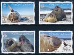 FALKLAND ISLANDS 2008, Elephant Seals Set Of 4v** - Falkland
