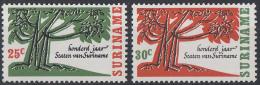 Suriname - 100 Jaar Staten Van Suriname - Postfris/MNH - NVPH 458-459 - Suriname ... - 1975
