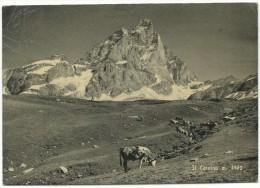 """1966, Valtournanche -  Alpi Pennine, """" Il Cervino"""" - Non Classificati"""