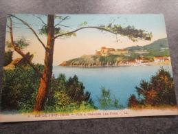 83 Ile De Port Cros Vue A Travers Les Pins - Other Municipalities