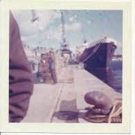 P61 - Navire � quai, grues, envol d'oiseaux - Bretagne ?? - photo vintage
