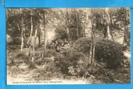 CP, 29, HUELGOAT, Sous Bois Près La Mare Aux Sangliers, Voyagé En 1930 - Huelgoat
