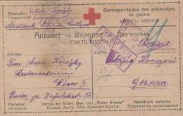 Stretansk Sibirien Russland 1917 - Rote Kreuz Karte Gel.v. Stretansk > Wien II - Rotes Kreuz