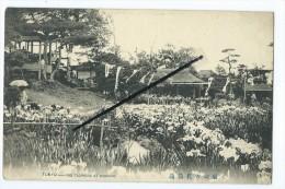 CPA - Tokyo - Iris Flowers At  Hikiri - Tokio