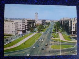 LE HAVRE - L'Avenue FOCH - Unclassified