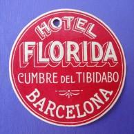 HOTEL RESIDENCIA PENSION HOSTAL SEGRE BARCELONA SPAIN LUGGAGE LABEL ETIQUETTE AUFKLEBER DECAL STICKER MADRID - Hotel Labels