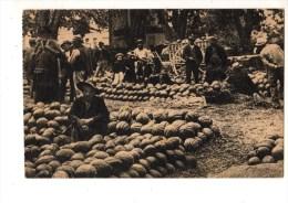 84----CAVAILLON----le Marché Aux Melons---voir 2 Scans - Cavaillon