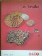 Les Fossiles - Enzyklopädien