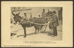 Fantaisie Patois Frazine Attelage Ane (Barraud) Charente (16) - Unclassified