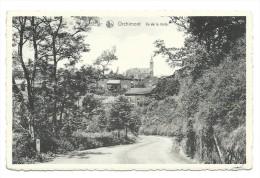 Carte Postale - ORCHIMONT - Vu De La Route - CPA  // - Vresse-sur-Semois