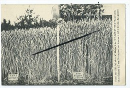 CPA - Essai De Blé Fait Chez M.Hervé à Saint Sébastien - Excédent Dû Au Nitrate De Soude :550 Kilos De Grain - Saint-Sébastien-sur-Loire