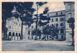 MACERATA - Macerata