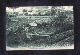 SP1-46SINGAPORE. CHINESE FARMER - Singapore