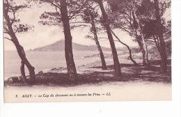 24148 AGAY - Cap Dramont Vu Travers Pins 4 LL - Non Classés