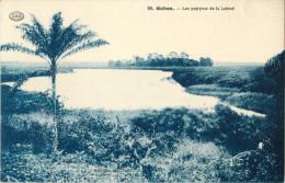 GABON - LES PAPYRUS DE LA LOEME    ( PRIX FIXE !! ) - Gabon