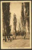 SORE Avenue Du Pont (Yobled Delboy) Landes (40) - Sore