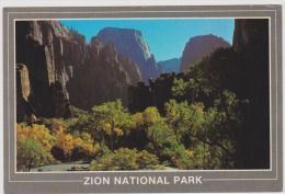 Zion-Utah-uncirculated,perfect Condition - Magazines: Subscriptions