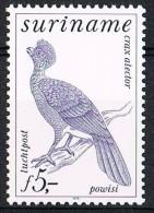 K606 FAUNA VOGELS BIRDS OISEAUX VÖGEL AVES SURINAME 1979 PF/MNH - Oiseaux