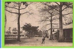 Boma- Avenue Royale Quartier Principal  35 - Belgian Congo - Other