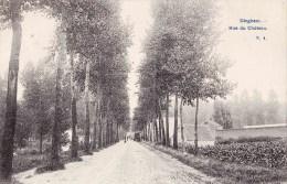 DIEGHEM - Rue Du Château - Circulée En 1906 - Diegem
