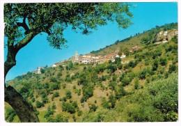 K1568 Pollica (Salerno) - Panorama / Viaggiata - Italia