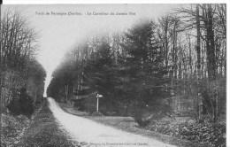 Forêt De PERSEIGNE : Le Carrefour Du Chemin Piot - CPA Utilisée Vers 1910 - Frankreich