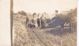 RP: Farmers Harvesting , ROSSEAU , Muskoka , Ontario , Canada , 00-10s - Muskoka