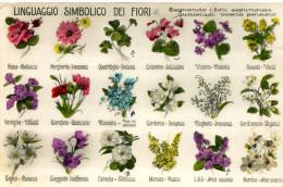 Linguaggio Simbolico Dei Fiori - Flowers, Plants & Trees