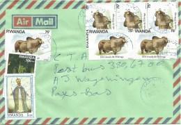 Rwanda 2010 Cyangugu ´A´ Brama Bull Cow 75frw Cover - Rwanda