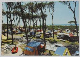 LIVORNO - Rosignano Marittimo - Vada - Camping La Pineta 2 Yolly - Campeggio - 1969 - Livorno