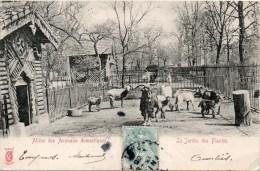 LE JARDIN DES PLANTES Allees Des Animaux Domestiques - Parcs, Jardins