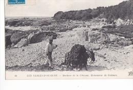 24208 Les Sables D´Olonne - Rochers De La Chaume - Ramasseur De Goemon -40 ND  -anne Algue - Sables D'Olonne