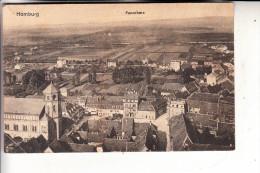 6650 HOMBURG, Panorama, 1919 - Saarpfalz-Kreis